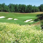 Stonehouse Golf Club in Williamsburg VA